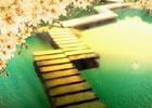 《三十•而立》,写在春节前夕!